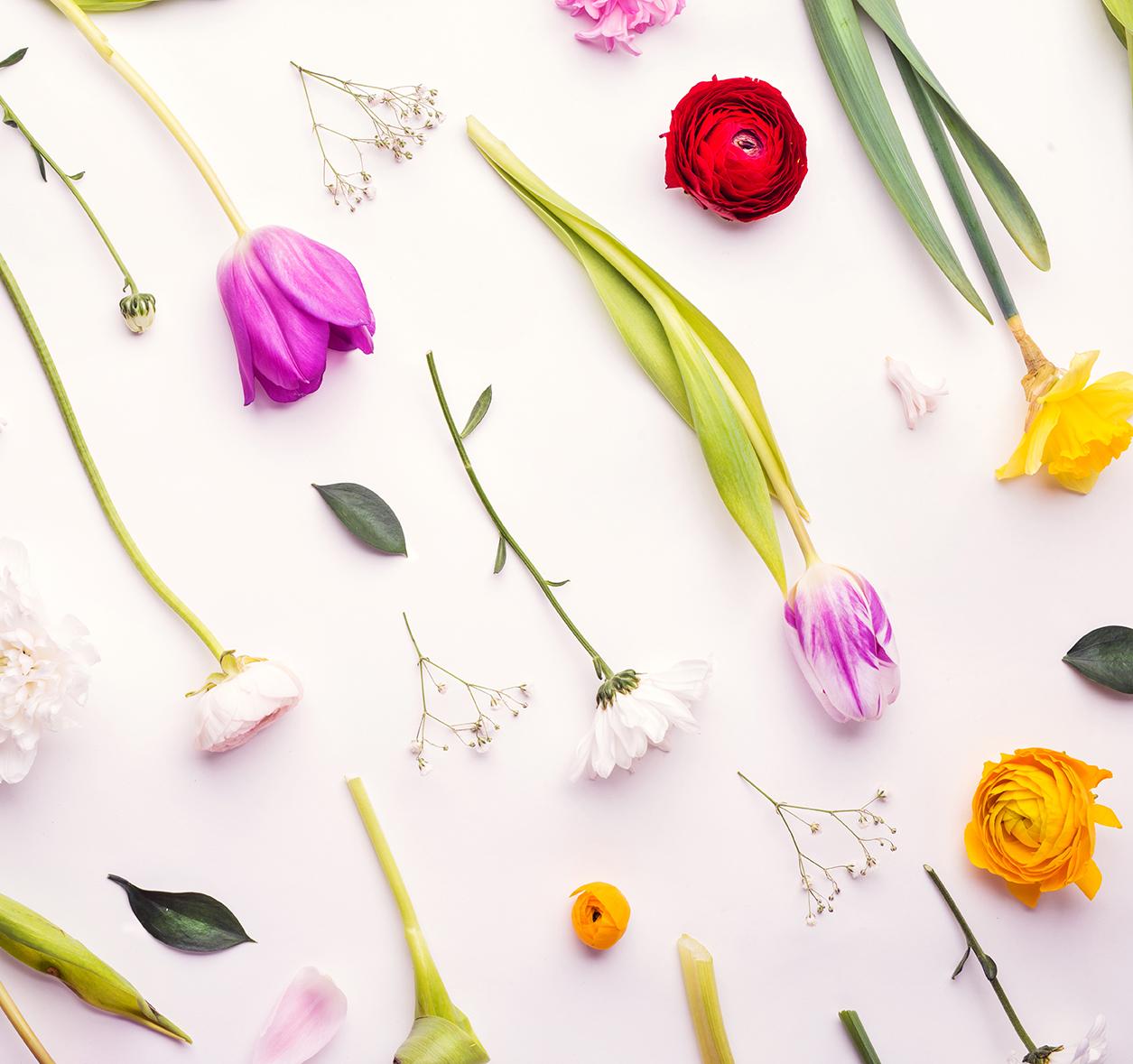 Composizione di fiori a Cortina Cesarino fiorista