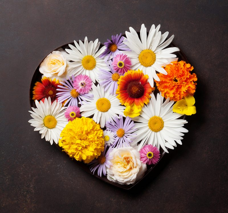 Garden flowers in heart shaped gift box on stone background. Top view with copy space